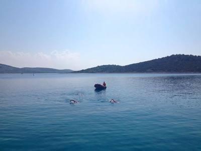 Aedin in croatia  dalmatian coast small